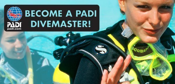 PADI Divemaster Course by Belize Pro Dive Center
