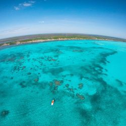 aerial-view-reef-patches