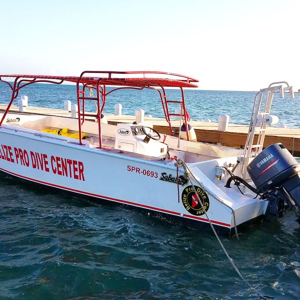 Belize Pro Dive Center Dive Charter Boat