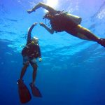 local-diving-handicapped-diving-02