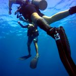 local-diving-handicapped-diving-04