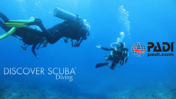 PADI Discover Scuba Diving by Belize Pro Dive Center
