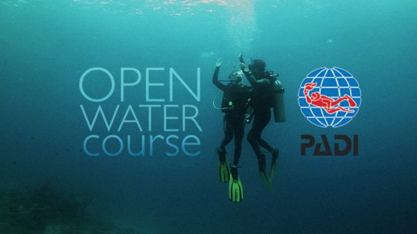 PADI Open Water by Belize Pro Dive Center