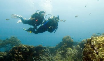 Deep Diver - PADI Specialty Course