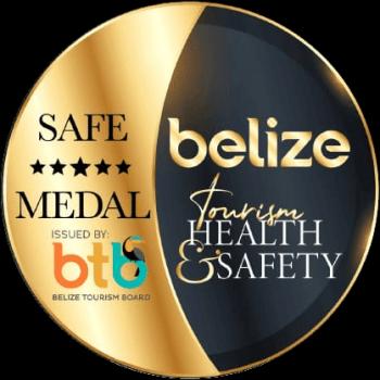 BTB Gold Standard Medal - Covid-19